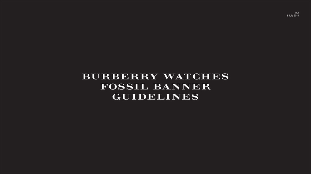 Burberry Fossil Banner Guidelines